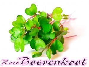 Roze Boerenkool